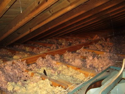 rodent-damage-to-insulation