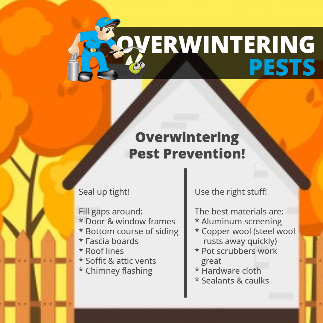 OVERWINTERING PESTS 2